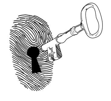 NSA bulk collection of certain phone call metadata is unlawful